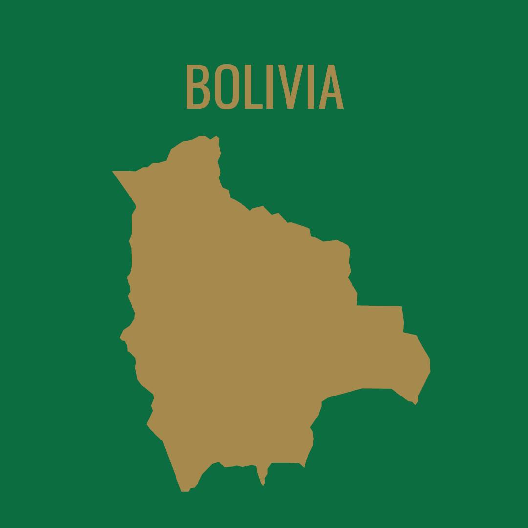 Silueta del mapa de Bolivia